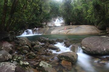 Excursão ao Planalto de Atherton saindo de Cairns