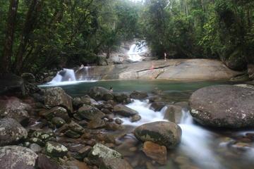 Excursion sur le plateau d'Atherton au départ de Cairns