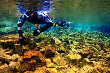 Buceo de superficie en Parque Nacional de Thingvellir y crucero de...