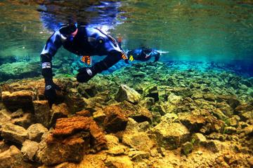 Plongée libre dans le parc national de Thingvellir et croisière...