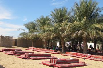 Familienfreundliches Wüstenlager mit Safari und Aktivitäten ab Abu...