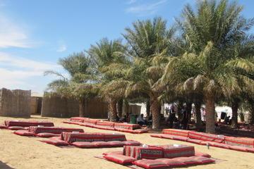 Woestijnkampsafari in bedoeïenenstijl en activiteiten van Abu Dhabi ...