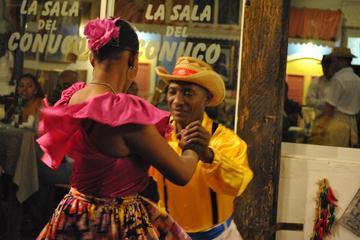 Excursion d'une journée complète à la ville de Saint-Domingue au...