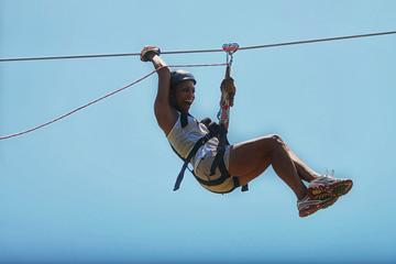 Monkey Jungle and Zipline Adventure from Puerto Plata