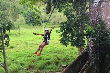 Monkey Jungle and Zipline Adventure...