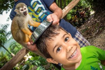 Monkeyland und Plantage; Safaritour ab Punta Cana