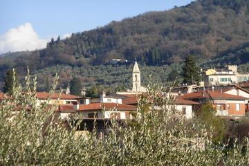 Escursione di trekking a Fiesole e