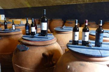 Excursão vinícola Brunello di Montalcino saindo de Florença com almoço