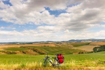 Tour in bicicletta della campagna toscana da Firenze, con