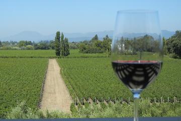Excursion en région viticole en petit groupe
