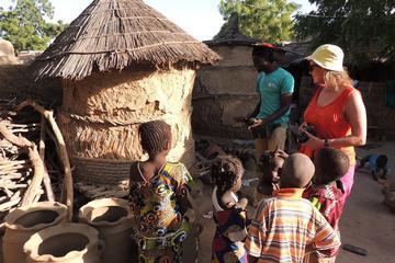Viagem pelo rio Níger com visita a...