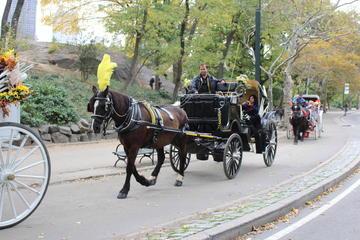 Paseo en coche de caballos privado en...