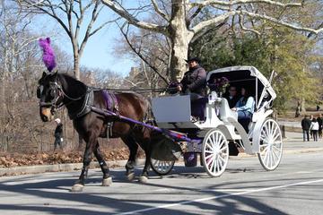 Pferdekutschfahrt im Central Park mit...