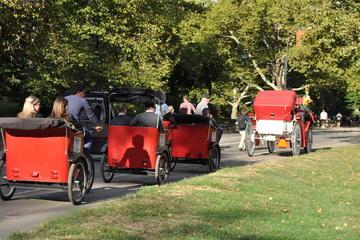 Tour privato di Central Park in risciò con servizio fotografico