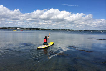 Stand-Up Paddleboard Rental in Casco Bay