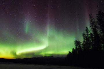 Day Trip 4-Day Yukon Aurora Viewing Tour near Whitehorse, Canada