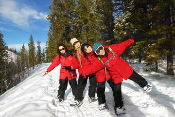 Half-Day Yukon Snowshoeing