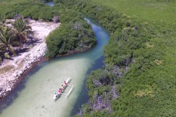 Mangrove Kayak Ecotour from Grand Case