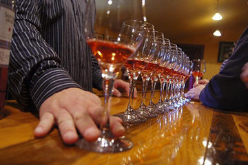 A viagem diurna perfeita para apreciadores de vinhos até Napa e Sonoma