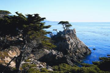 Excursion d'une journée à Monterey et Carmel via la côte californienne