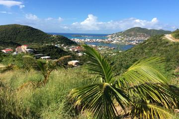 Excursion en bord de mer: Excursion à Saint-Martin mêlant plage...
