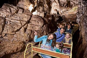 Excursão Diurna com Mistério da Caverna e do Castelo de Postojna...