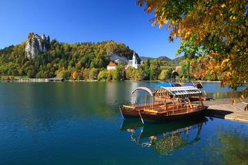 Excursion d'une journée dans la région alpine depuis Ljubljana