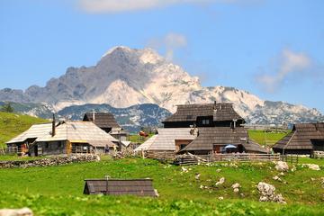 Kamnik and Velika Planina Small-Group...