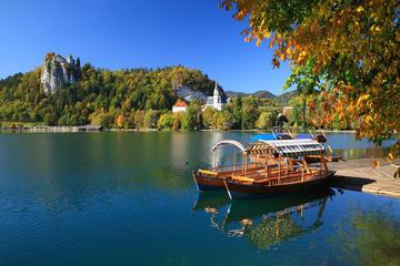 Viagem Diurna à Região dos Alpes saindo de Ljubljana