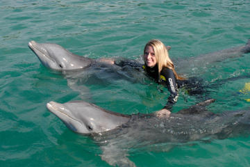 Dolphin Swim in Freeport