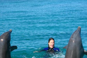 Nage parmi les dauphins en pleine mer à Freeport