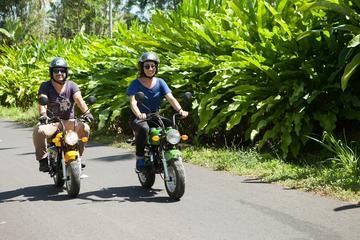 7-Hour Mini-Motor Bike Tour in Bali