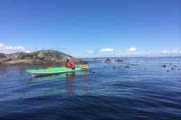 Discovery Island Kayak Tour