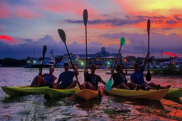 Day Trip Guided Myrtle Beach Kayak Tour near Myrtle Beach, South Carolina