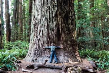 Recorrido del movimiento hippie por Muir Woods, el puente Golden Gate...