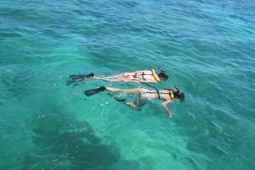 Schnorchelabenteuer im Riff vor Nassau