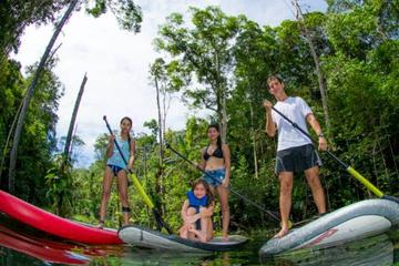 Excursão com stand-up paddle