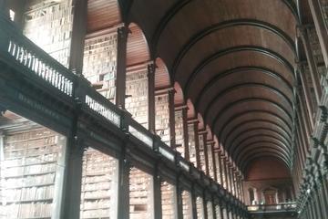 Tour di mezza giornata a Dublino (in