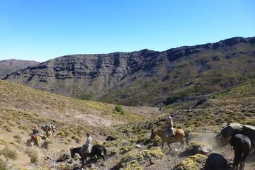 5-tägiger Ausritt ab Santiago