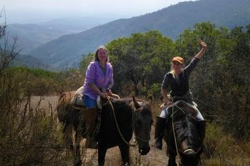 Aventura a caballo en el campo Chileno
