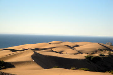 Dunes and Beach Horseback Adventure from Santiago