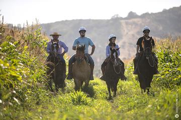 Horseback Riding at Organic Vineyard...