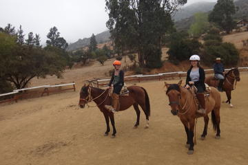 Horseback Riding Trip with Barbecue