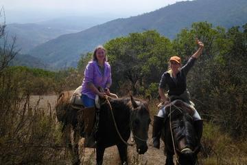 Recorrido a caballo en la Precordillera chilena dede Valparaíso