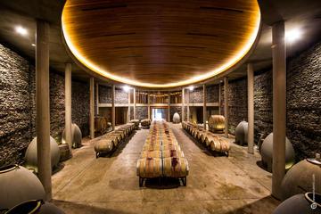 Wine Tour at Two Organic Vineyards...