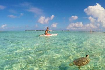 Guided Stand Up Paddleboard Tour...