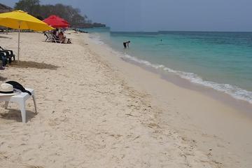 Excursion d'une journée à Playa Blanca et l'île de Baru au départ de...