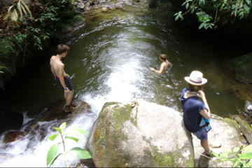 Private Tour: Medellín Nature...