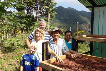 San Francisco: Tagesausflug ab Medellín mit Schokolade und Workshop