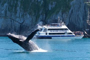 Crucero de día completo por el Parque Nacional de los Fiordos de Kenai